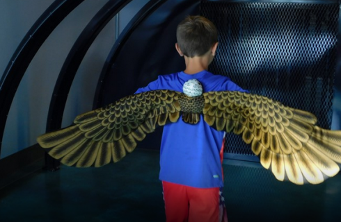 boy wearing bird wings in  a wind tunnel