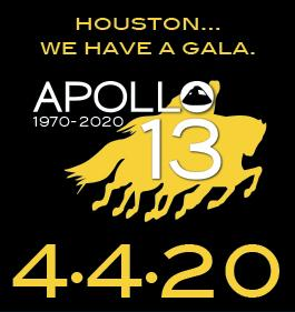 """""""Houston....We have a gala!"""""""
