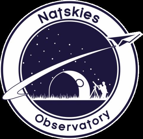 Natskies Logo